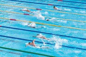 People in Swimming Pool Swim In Breaststroke Technique