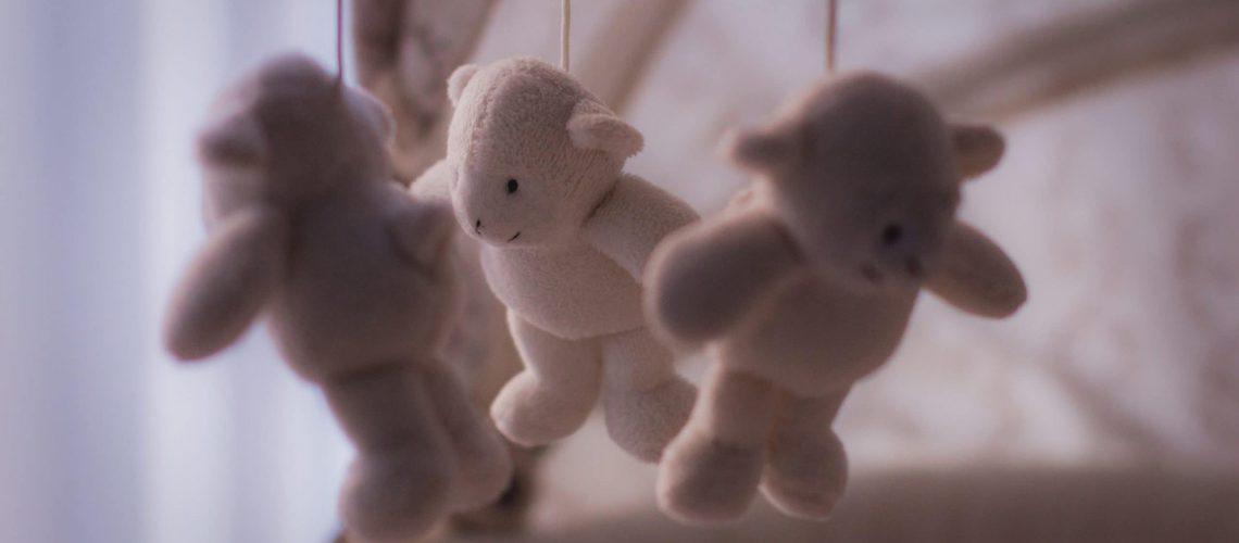 Toddler Crib With Stuffed Animals